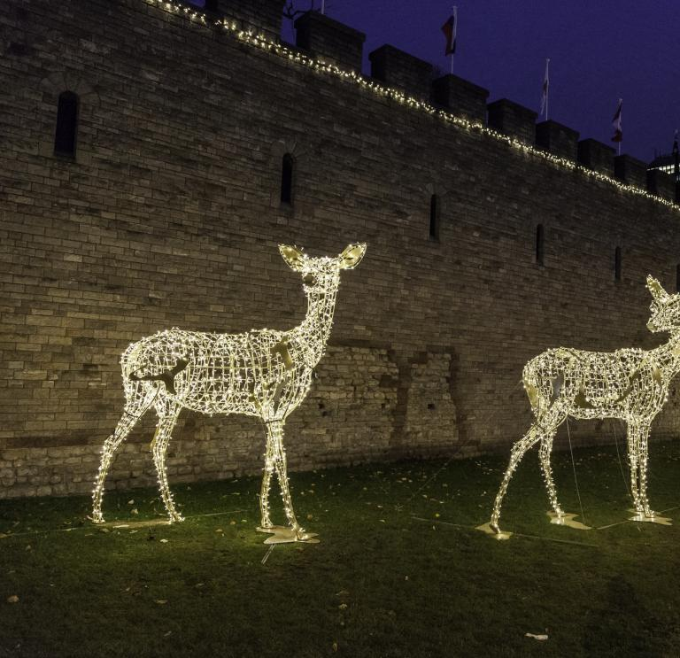 Events In Wales During December Things To Do Visit Wales